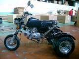 Мотор Трике (ЛДФ-ТК004)
