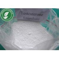 Buy cheap Powerful Steroids Hormone Testosterone Enanthate for Bodybuilding Cas 315-37-7 product