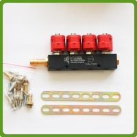 China CNG LPG Injector Rail 3Ohms for 4cylinder Sequential injection System Common on sale