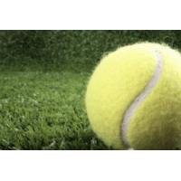 Buy cheap Suntex Golden Slam-T19 tennis artificial grass product