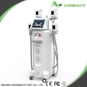 China Cryolipolysis weight reduction beauty machine on sale