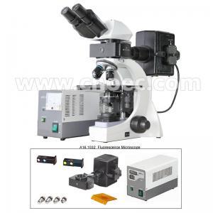Buy cheap La lampe binoculaire infinie B et G du microscope de fluorescence 3W LED from wholesalers