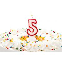 Birthday Candle Number 5 With Red Color Edge , Lovely Candles For Cake Decorating for sale