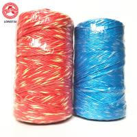 Buy cheap 5mm 2 Ply Twisted Colorful Polypropylene Baling Twine With High Breaking Strength product