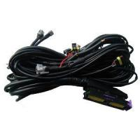 China CNG/LPG Vehicle Wire Harness on sale