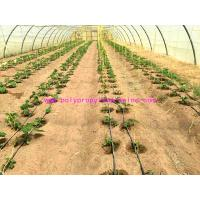 Buy cheap 1g/m Stable Agricultural Tomato Tying Twine High Tenacity Different Colored from wholesalers