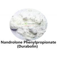 China Nandrolone Phenylpropionate / NPP 62-90-8 Pharmaceutical Injectable Steroid Powder Source wholesale