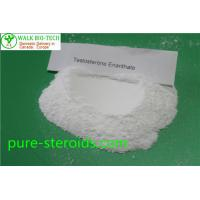 China Powerful Steroid Pure 99%+ Testosterone Enanthate Steroids powder for bulking muscle wholesale