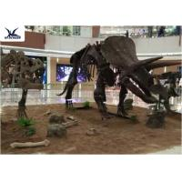 Buy cheap Amusement Park Facility Life Size Dinosaur Skeleton Replica Artificial Replica Model product