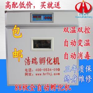 Incubateur de Hao Rui, équipement d'incubation