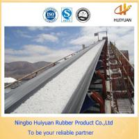 China Chemical Resistant Conveyor Belt for Chemical Factory (EP100-EP500) on sale