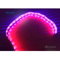 China Full color strip led 5050 waterproof IP65 flxible strip with UL listed on sale