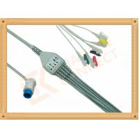Buy cheap Mindray PM5000 Patient 5 Lead Ecg Cable 12 Pin Ecg Lead Wires product
