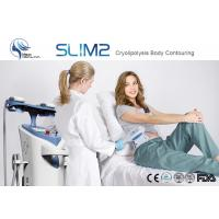 Buy cheap Two handpiece Cryolipolysis fat freeze slimming machine for weight loss cellulite reduction product
