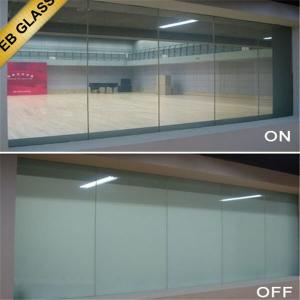 Quality e windows EBGLASS for sale