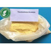 Buy cheap Health Gym Yellow Steroid Raw Powder Trenbolone Acetate for Muscle Growth from wholesalers