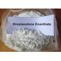 Buy cheap Gym Training Muscle Building Steroids Injectable Drostanolone Enanthate 100MG/ML 472-61-145 from wholesalers