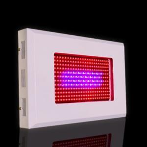 Buy cheap x2 65 degree popular land high quality led grow light product