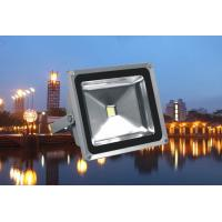 Buy cheap High Power Outdoor Led Flood Light 10w - 100w White / Rgb Color for Stage product