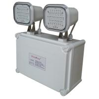 2*4W Power Failure Industrial Emergency Light IP65 With