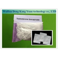 Buy cheap 15262-86-9 Oral Steroid Hormone Powder Raw Testosterone Isocaproate Powder from wholesalers