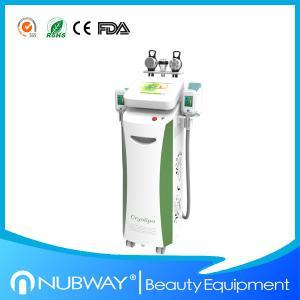 Buy cheap Perda de peso Cryotherapy de Cryolipolysis/máquina beleza do emagrecimento product
