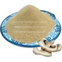 China Dehydrated Button Mushroom Powder on sale