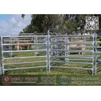 Buy cheap China 1.6m high Corral Panels (Supplier) | oval pipe Horse Fence Panel product