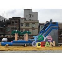 China Large Delphinus Delphis Custom Inflatable Water Slide For Kids / Adults on sale
