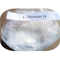 China High Purity L Thyroxine T4  CAS 51-48-9 , Pharmaceutical Grade Weight Loss Steroids wholesale