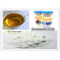 China Medical Testosterone Blend Bulk Steroid Powders Sustanon 250 CAS 58-22-0 for Cutting Cycle wholesale