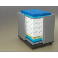 Buy cheap Cooler Cold Chain Packaging Box With EPP product