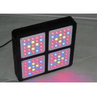 Buy cheap Growing Weed Cannabis 300w Led Grow Light Dual Switches For Medical Plants VEG Flower product