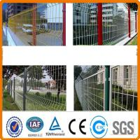 Buy cheap ISO9000 certificated PVC painted wire mesh fence product
