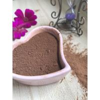 China Dark Brown Healthy Cocoa Powder AF02 , Unsweetened Cocoa Powder 10-12% Free Flowing on sale
