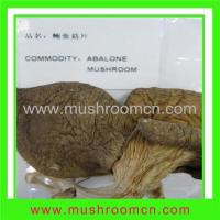 Buy cheap Dried Abalone Mushroom product