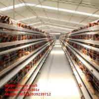 Buy cheap Cheap Price Poultry Farm Cage Layer Chicken Coop For 5000 Chickens product