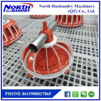 China Poultry farm machinery, automated poultry farm equipment on sale