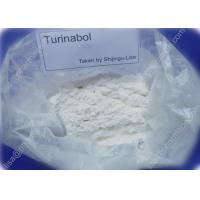 Quality Pro Turinabol Raw Testosterone Powder Aid in Maintaining Strength While Dieting for sale