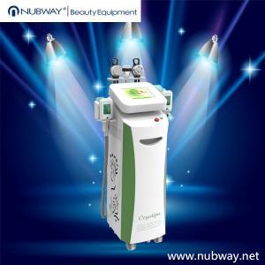 Máquina do emagrecimento de Cryolipolysis para o corpo que contorna/máquina de congelação gorda