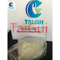 Buy cheap Sustanon 250 Testosterone Steroid Hormone Testosterone Blend Steroid Powder from wholesalers
