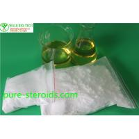 China AndrogenicHormone  Primobolan Powder Base for Male Bodybuilders Strength Gains wholesale