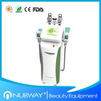 Buy cheap cryolipolysis machine/Cryolipolysis slimming machine with optional lipo laser pads product