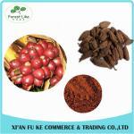 Tsaoko Amomum Fruit Extract / Fructus Tsaoko Extract Powder 4:1 - 20:1
