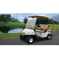 Buy cheap High Safe Mini Electric Vehicle Single Seat Golf Cart With CE Certificate product