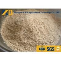 Buy cheap Non GMO Organic Brown Rice Protein Powder OEM Brand With 20kg Plastic Bag Package product