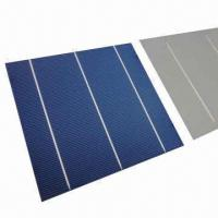 Buy cheap 2012 High-efficiency 156 x 156mm Poly Solar Cell, 4.25W from wholesalers