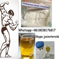 Methenolone Enanthate Testosterone Primobolan Steroids For Muscle Growth 303-42-4