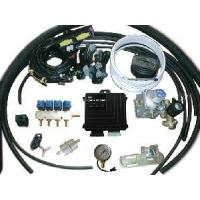 China CNG Conversion Kits for CNG Cars with Multipoint Injeuction System on sale