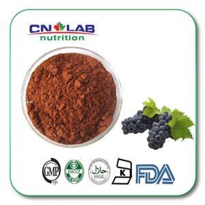 Buy cheap extrait 95% Procyanidin de graine de raisin UV product